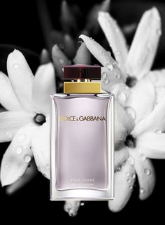 Dolce&Gabbana Perfumes for her: Pour Femme - From the Mediterranean, epicentre of harmonies and contrasts, the classic perfume, Dolce&Gabbana Pour Femme, is reborn embodying the essence of the Dolce&Gabbana woman – passionate, sensual and maternal. For the woman that is aware of her strength and her instincts. Top Notes: neroli, raspberry, green mandarin. Heart Notes: jasmine, orange blossom. Base Notes: Guimauve, vanilla, heliotrope, sandalwood.