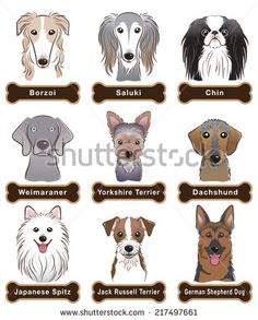 Dog / Nameplate - stock vector