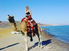 Because sometimes you just have to ride a camel called Humdah! Sharm El Sheikh, Holiday Fun, Egypt, Camel, Sunshine, Outdoors, Sea, Instagram Posts, Animals