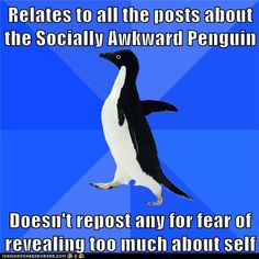 Socially Awkward Penguin. It was too accurate, I'm revealing too much, but I had to pin it... Please don't judge me...  :)