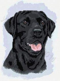 Black labrador dog (no 2) cross stitch kit or pattern   Yiotas XStitch