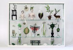 Les Végétaux : collection