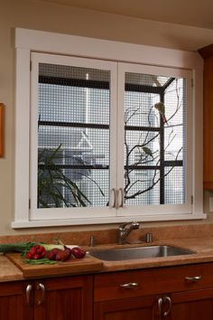 Bird Cages Design Ideas, Pictures, Remodel, and Decor - page 3; live birds living in the bay window