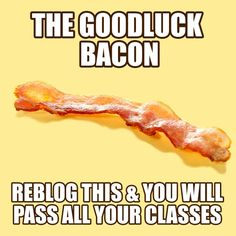 this is the best thing I ever did in my life! ^-^-----I don't even like bacon but I need the luck😑 Just Do It, Just In Case, Clash On, Funny Quotes, Funny Memes, Hilarious, Jokes, Funny Captions, 4 Panel Life