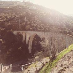 Abandoned bridge #bridge #forgottenplaces #dreamscape #beautiful #peacefull #travels #abandoned #iloveit