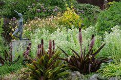 GardenBook: Summer at Mendocino Coast Botanical Garden