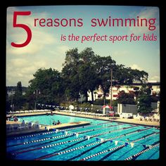 For Corey! Keep on SWIMMING!Another way to get moving! And text HEALTH to 300400 for help! mamascout: 5 reason swimming is the perfect sport for kids. if you enjoyed swimming during the summer have you considered continuing on a team through the school ye Swim Mom, Keep Swimming, Swim Lessons, Sports Mom, Exercise For Kids, Summer Activities, Fitness Activities, During The Summer, A Team