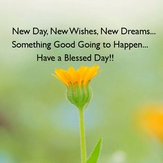 714 best greetings images on pinterest frases good morning and new day new wishes new dreams morning good morning new year good morning quotes m4hsunfo
