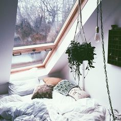 How to Create a Cozy Sleeping Space   Sleep is a beautiful, wonderful thing. It's essential for the healing...