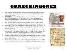APOYO ESCOLAR ING MASCHWITZT CONTACTO TELEF 011-15-37910372: PUEBLOS ABORÍGENES DE LA ARGENTINA Ecards, Memes, Socialism, Educational Activities, Middle Earth Map, Science Nature, E Cards, Meme