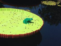 LEGO lily pad and frog