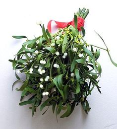 Christmas Wedding Bridal Bouquets [Slideshow]