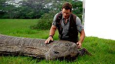 Chris Pratt - Jurassic World Jurassic Movies, Jurassic Park Series, Jurassic Park 1993, Jurassic World 2015, Jurassic World Dinosaurs, Lance Gross, World Movies, The Lost World, Chris Pratt