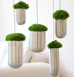 Hanging Flower Pot® by Gabriella Asztalos | Hanging Flower Pot  This would be awesome for the kitchen!