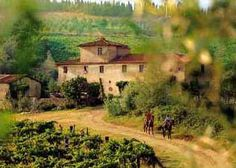 Horseback riding in Tuscany, a region in central Italy.  Breathtaking views and greenery.