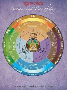Ayurvedic Dosha Clock and Seasons - Ayurveda Lifestyle Ayurveda What Is, Buzzfeed, Ayurveda Pitta, Ayurveda Lifestyle, Ayurvedic Healing, August Summer, Eastern Medicine, Surya Namaskar, Yoga World