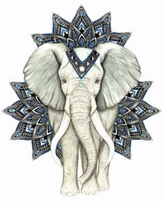 This drawing is an african elephant with zen mandala drawings around it.