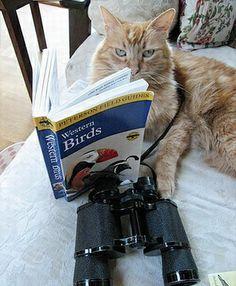 Study up and be prepared...  http://sunnydaypublishing.com/books/