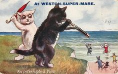 """""""An interrupted view"""". Tales of the Seaside. Cats as People (postcard). 1919. artist W. Ellam."""