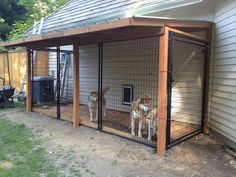 We made an inside outside dog kennel! Just amazing work! The dogs their new home! (It goes into a kennel in the garage) ideas for dogs Top 40 Large Dog Crate Ideas In 2019 Large Dog Crate, Large Dogs, Large Dog House, Dog Enclosures, Diy Dog Kennel, Kennel Ideas, Dog Kennel Designs, Husky Kennel, Outside Dogs