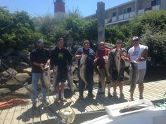 A solid day of Striped Bass fishing with Shark Shark Tuna charters.  Check us out at www.sharksharktuna.com now to book your Cape Cod fishing charter today!