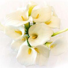 Arum lily bouquet #secretblossom #flowersmelbourne #melbourne #melbourneflowers #melbournestyle #melbournelife #melbourneshopping #melbourneflorist #melbournebride #melbournewedding #melbournenow #melbournecity #melbournegirl #cityofmelbourne #weddinginspo #weddinginspiration #bridalbouquet #weddingflowers