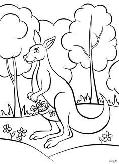 coloriage bébé kangourou hugolescargot com patterns