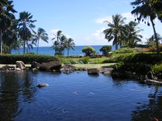 Grand Hyatt Kuaui. They have a Pool that you can kayak in! check