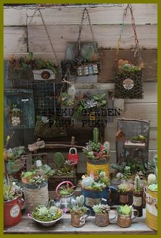 junk meets succulent <3 love this idea, already started my own collection :-)
