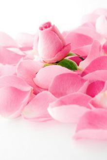 Ideas on how to use your roses! Rose bath oil, dusting power, and vinegar.
