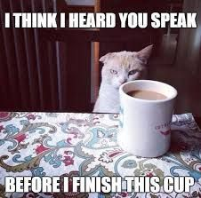 Never Ever Speak To A Non Morning Person Before They Have Had Their First Cup Of Coffee Go Funny Good Morning Memes Morning Memes Good Morning Funny