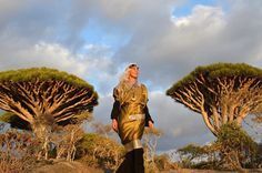 Socotra 2012 Self-portrait with Dragon Blood trees .