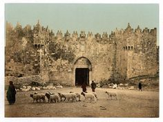 The Damascus Gate, built in its current form in 1537, is the main entrance to the Old City.