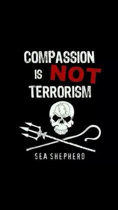 COMPASSION. LIVE IT.