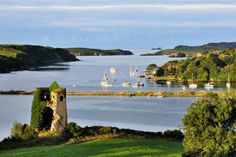 Ireland, Cork, Castletownshend, View Of Castlehaven Harbor - eStock