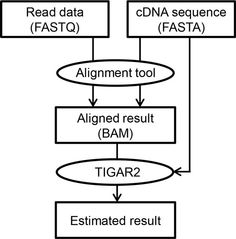 TIGAR2 – estimation of transcript isoform expression with longer RNA-Seq reads - High-throughput RNA sequencing (RNA-Seq) enables quantification and identification of transcripts at single-base resolution. Recently, longer sequence reads become available thanks to the development of new types of sequencing technologies as well as improvements in chemical reagents for the Next Generation Sequencers. Although several computational methods have been proposed for quantifying gene expression…