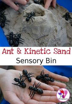 Fun Sensory Play in an Ant & Kinetic Sand Sensory Bin - an easy to set up and play in sensory bin for kids with an ant theme - 3Dinosaurs.com #3dinosaurs #sensoryplay #sensorybin #antsforkids #preschool #kinder