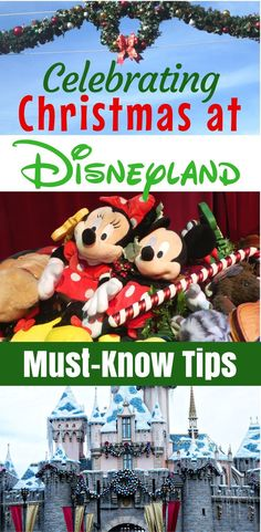 Must-Know Tips for Celebrating Christmas at Disneyland Resort These tips for celebrating Christmas at Disneyland during the winter holidays will help you navigate crowds & enjoy the most magical vacation! Disneyland California, Disney California Adventure, Disneyland Resort, Mickey's Very Merry Christmas, Celebrating Christmas, Disneyland Christmas, Disney Holidays, Disneyland Secrets, Disneyland Hacks