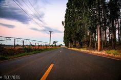 """""""A sua estrada é somente sua ... Outros podem acompanhá-lo, mas ninguém pode andar por você."""" (Rumi) #estradadagabiroba @vicky_photos_infantis https://www.facebook.com/vickyphotosinfantis http://websta.me/n/vicky_photos_infantis https://www.pinterest.com/vickydfay https://www.flickr.com/vickyphotosinfantis"""