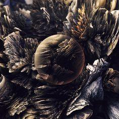 Ari Weinkle — Orbs