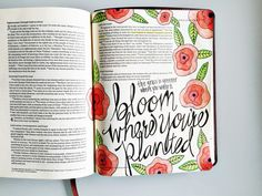 """I have learned to be content whatever the circumstances... I can do all this through him who gives me strength.""""  - Philippians 4:11b-13 