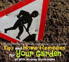 Tips and Home Remedies for your Garden - DOZENS of them!
