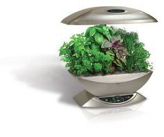 AeroGarden 2101-00S Classic 7-Pod with Gourmet Herb Seed Kit, Silver by AeroGrow. $159.95. Everything you need to grow now. Easy, foolproof and 100% guaranteed. No dirt, no mess, no green thumb required. Over 400,000 satisfied AeroGardeners. The original indoor garden. Amazon.com                Enjoy fresh greens at every meal no matter what the season. With AeroGrow's AeroGarden garden kit, it's easy to cultivate lettuce, cherry tomatoes, herbs, chili peppers, edibl...
