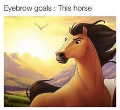 Funny, goals, and horse: eyebrow goals: this horse Funny Relatable Memes, Funny Jokes, Hilarious, Spirit The Horse, Spirit Animal, Eyebrows Goals, Lol, Disney And Dreamworks, Stupid Funny