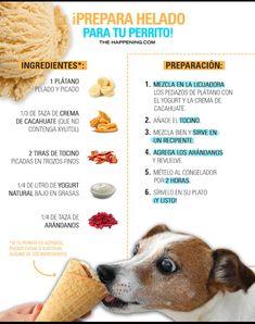 Love Pet, I Love Dogs, Animals And Pets, Cute Animals, Homemade Dog Treats, Dog Hacks, Mocca, Dog Care, Pet Shop