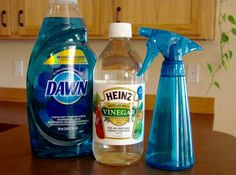 Homemade Glass Cleaner with Vinegar Recipe at TheFrugalGirls.com