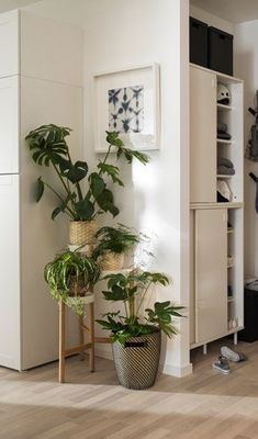 Ikea Lab catálogo Decorating Your Home, Interior Decorating, Interior Design, Apartment Entrance, Corner Wall Shelves, Bathroom Design Small, First Home, Elle Decor, Bed Parts