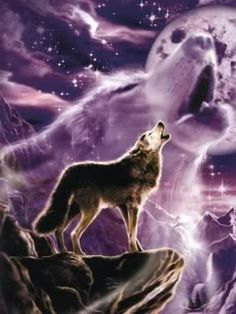 Photo of wolf fantasy for fans of Wolves 8447352 Wolf Photos, Wolf Pictures, Free Pictures, Anime Wolf, Beautiful Creatures, Animals Beautiful, Tier Wolf, Wolf Artwork, Wolf Painting