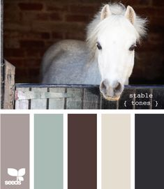 From the stables to your life. This palette is well rounded and will work well across all aspects of your life Scheme Color, Color Palate, Colour Schemes, Color Combos, Wall Colors, House Colors, Paint Colors, Design Seeds, Color Swatches
