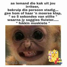 Funny Pics, Funny Pictures, Lekker Dag, Afrikaanse Quotes, Twisted Humor, Jokes, Fanny Pics, Fanny Pics, Funny Photos